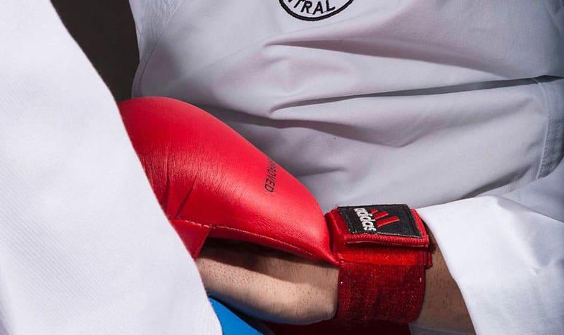 Karate Torrejón de Ardoz